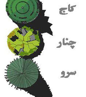 نظام کاشت درختان در باغ ایرانی