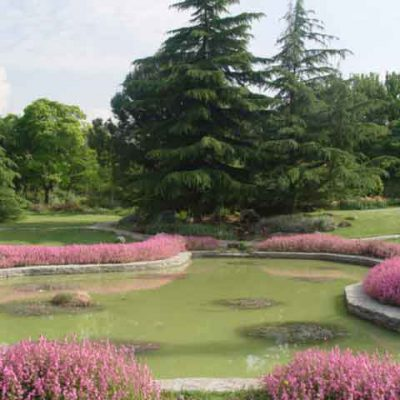 باغ گیاه شناسی Botanic Garden