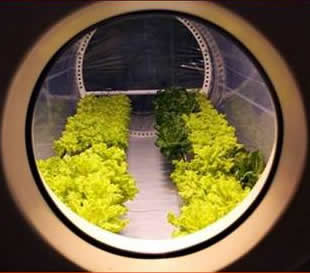 کشاورزی در فضا