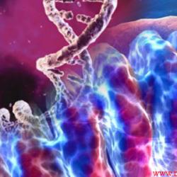 ژنهای مادری