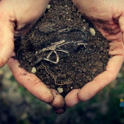 خطر آلودگی خاک