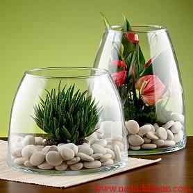 ساخت باغ شیشه ای