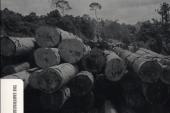 دانلود رایگان کتاب لاتین Forests in Landscapes ; Ecosystem approaches to sustainability
