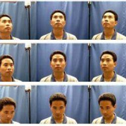 شناسایی چهره از طریق یادگیری پایه های محلی بهینه