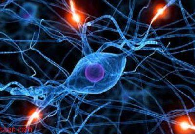 شبکه عصبی مصنوعی