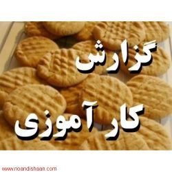گزارش کارآموزی صنایع غذایی