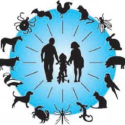 بیماریهای زئونوز