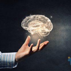 رفتار نورونها را در قشر کمربندی خلفی