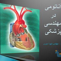 جزوه آناتومی در مهندسی پزشکی
