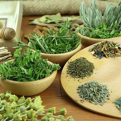 جزوه کاشت گیاهان دارویی