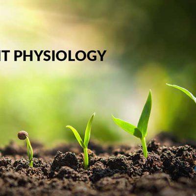 جزوه فیزیولوژی گیاهی 3