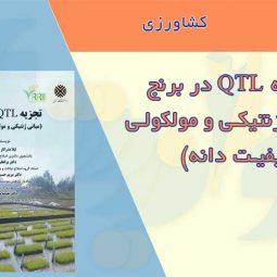 کتاب تجزیه QTL در برنج