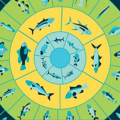 بررسی میزان جیوه در ماهیهای مصرفی
