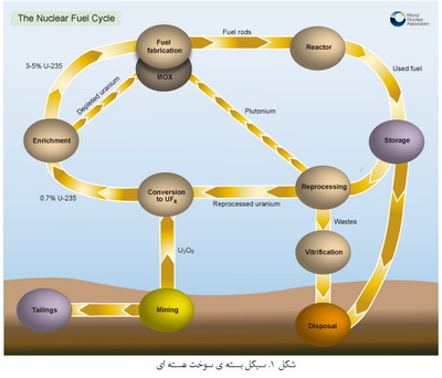 سوخت هسته ای