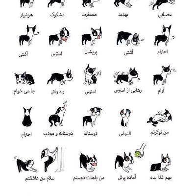 رفتارشناسی سگ ها