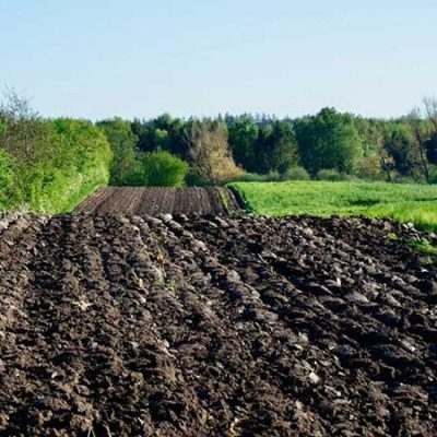 سلنیوم و اصلاح آلودگی آن در خاک