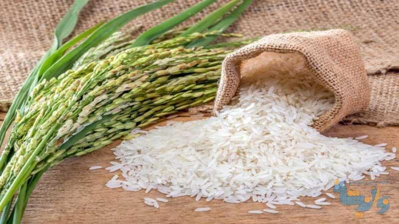 دستورالعمل تولید برنج سالم