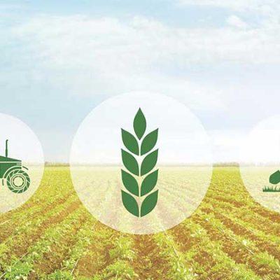 طرح توجیهی کشاورزی و علوم دامی