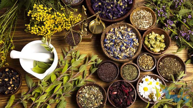 فیزیولوژی تنش های محیطی در گیاهان دارویی